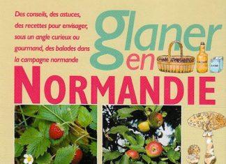 Glaner en Normandie